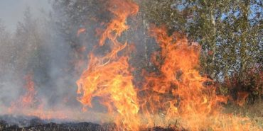 """Ліквідовано пожежу на території Національного природного парку """"Гуцульщина"""""""