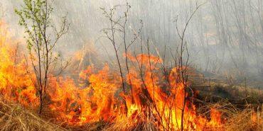 Спалюючи листя, у Тисмениці ледь не згоріла пенсіонерка