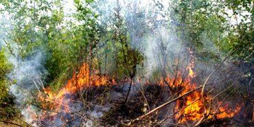 На Снятинщині 87-річний чоловік через пожежу потрапив до реанімації
