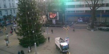 Мешканці Івано-Франківська критикують міську ялинку