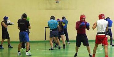 Національна олімпійська збірна України з боксу тренується у Коломиї. ВІДЕО