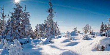 Турист з Буковини серйозно травмувався у зимовому поході