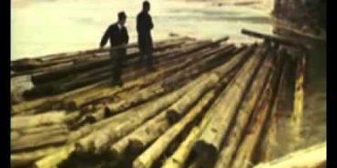 Як півстоліття тому гуцули сплавляли по річкам ліс . ВІДЕО
