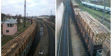 У Коломиї зафіксували 11 вагонів з деревиною з Білорусі. ФОТО