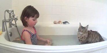 Маленьку дівчинку з аутизмом навчила говорити кішка