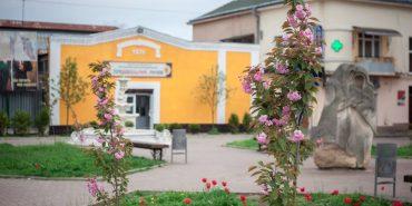 У Коломиї зацвіли сакури від Балоги, які два роки тому молодь висадила з мером Мукачева. ФОТО