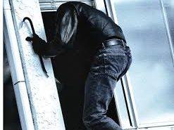 На Коломийщині затримали чоловіка, який обікрав односельця