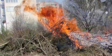 Комунальники Коломиї спалюють гілля дерев під вікнами житлових будинків. ВІДЕО