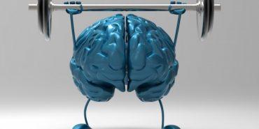Науковці дізнались, що спорт позитивно впливає на мозок
