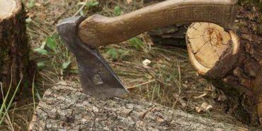 У Долинському районі в результаті незаконної вирубки дерев нанесено шкоди на 22 тисячі гривень