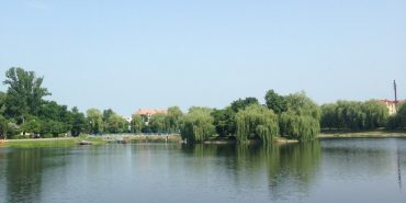 На міському озері у Коломиї врятували 24-річного хлопця