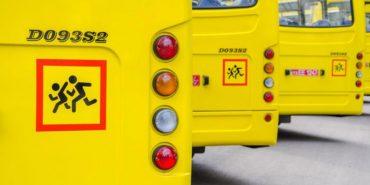Шкільні автобуси для Прикарпаття на 36 мільйонів купили у партнера Порошенка