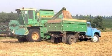 Аграрії Коломийщини прогнозують зменшення урожаю через посуху. ВІДЕО