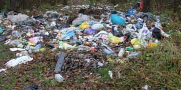 Міністр екології пропонує українцям фотографувати сміттєзвалища