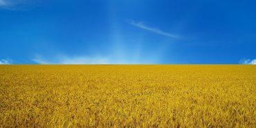 Три найпоширенiші прiзвища визначено в Українi