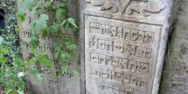 Занедбаний єврейський цвинтар знайшли на Прикарпатті польські волонтери
