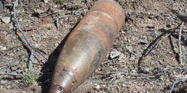 На Коломийщині в лісі знайшли два артснаряди часів Другої світової війни
