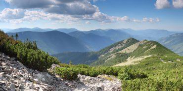 """""""Горгани"""" та """"Синевір"""" внесуть до Європейської системи збереження дикої природи"""