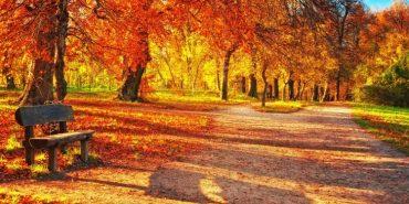 Кульбіда обіцяє у жовтні бабине літо, але ненадовго