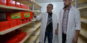 Від заготівлі молока до виробництва твердих сирів: на Коломийщині створюють фермерське господарство