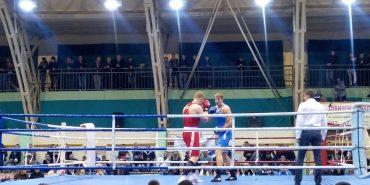 У боксерському турнірі на Прикарпатті українці перемогли німців та молдаван. ФОТО