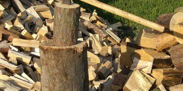 На Франківщині чоловік  отримав смертельну травму під час незаконного рубання дров