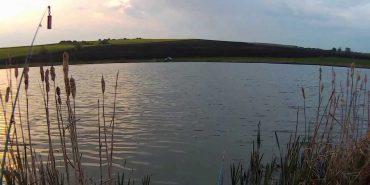 Встановлено особу прикарпатця, тіло якого знайшли в міському озері