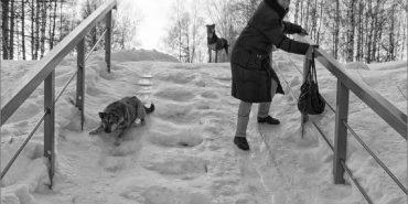Лавини, сніг та ожеледиця: на Прикарпатті оголосили штормове попередження