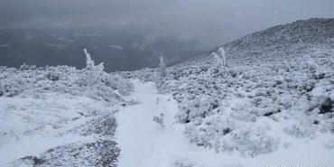 На Чорногірському хребті намело майже метр снігу. ФОТО