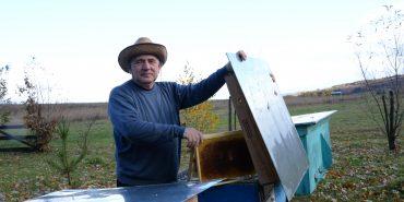 """Фермер і підприємець Микола Томенко з Печеніжина 18 років займається бджолярством: """"Це найчесніший і найздоровіший вид діяльності"""". ФОТО"""