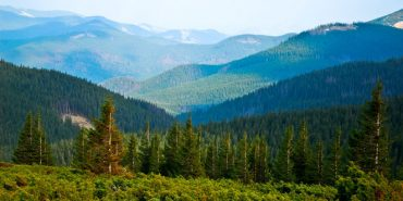 Карпатському НПП повернули 1,8 га цінних земель природно-заповідного фонду