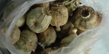 На Коломийщині у помешканні виявили 35 кг макової соломки. ФОТО