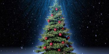 12 найцікавіших різдвяних ялинок України. ФОТО