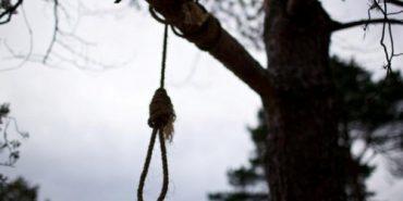 На Прикарпатті знайшли повішеною на дереві 18-річну дівчину