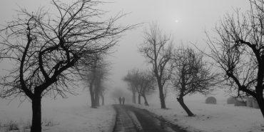 Прикарпатців попереджають про туман та сходження лавин