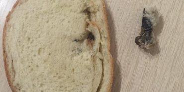 Прикарпатка виявила у хлібі болт. ФОТОФАКТ