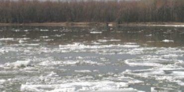 Майже на метр піднялася за добу вода в річці Черемош на Верховинщині