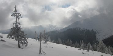 На Верховинщині випав сніг. ВІДЕО