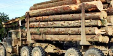 На Франківщині перекинулася вантажівка з деревиною –  загинув 55-річний пасажир