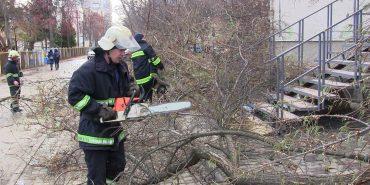 Через сильний вітер мешканцям Прикарпаття радять оминати розлогі дерева й рекламні щити