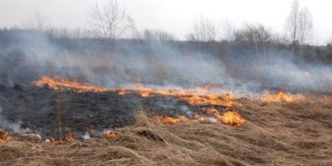Рятувальники закликають прикарпатців не спалювати суху траву
