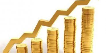 За рік бюджет Печеніжинської ОТГ зріс з 4-ох до 60-ти мільйонів гривень