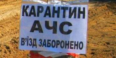 Африканська чума: у селі на Прикарпатті встановили блокпости та оголосили карантин