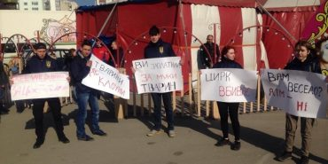 """В Івано-Франківську провели мітинг """"За цирк без тварин"""". ВІДЕО"""