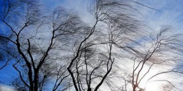 На Івано-Франківщині очікується посилення вітру
