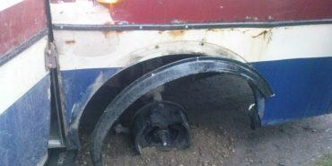 На Франківщині від маршрутного автобуса на ходу відпало колесо. ФОТОФАКТ