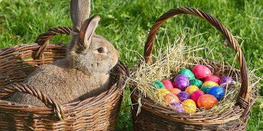 Великодній заєць vs. писанки? Як різняться великодні традиції у Швайцарії та на Коломийщині