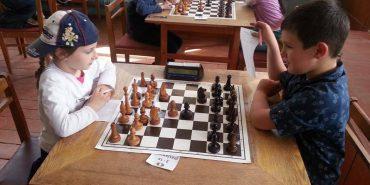 Дві сестри з Коломиї 4-річна Софія та семирічна Христина Дем'янчуки завоювали призові місця на Чемпіонаті області з класичних шахів. ФОТО