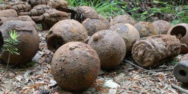 У лісі на Прикарпатті знайшли мінометні міни, авіабомби та гранати – всього 26 боєприпасів. ФОТО