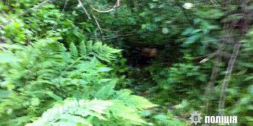 На Прикарпатті у лісі знайшли тіло двомісячної дитини – у вбивстві підозрюють мати хлопчика. ФОТО